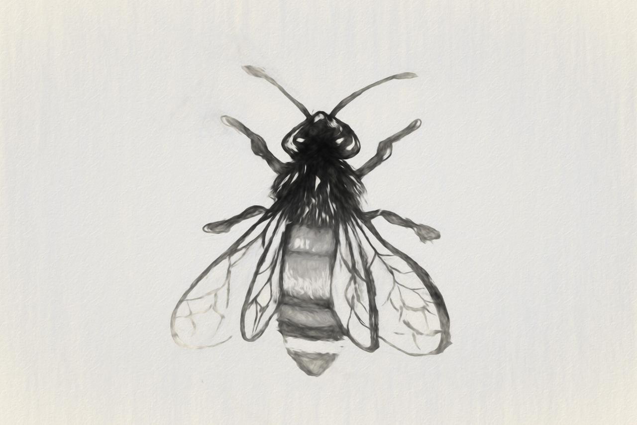 Lover Bee